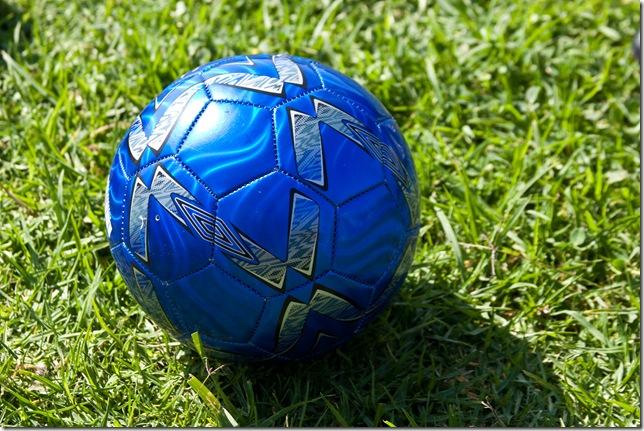 C- Soccer 2010 ENGE-004