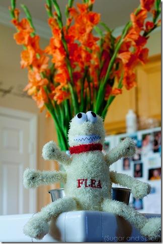 Flea 2010 ENGE-4477