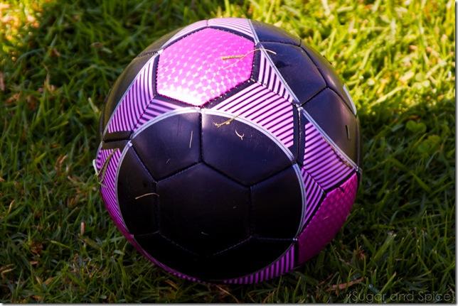 L- Soccer 2010 ENGE-013