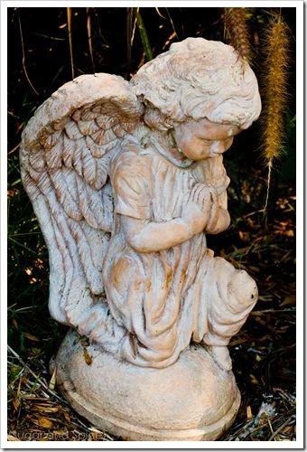 Sept St Pauls 2010 ENGE-046